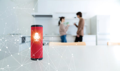 smart speaker in the home
