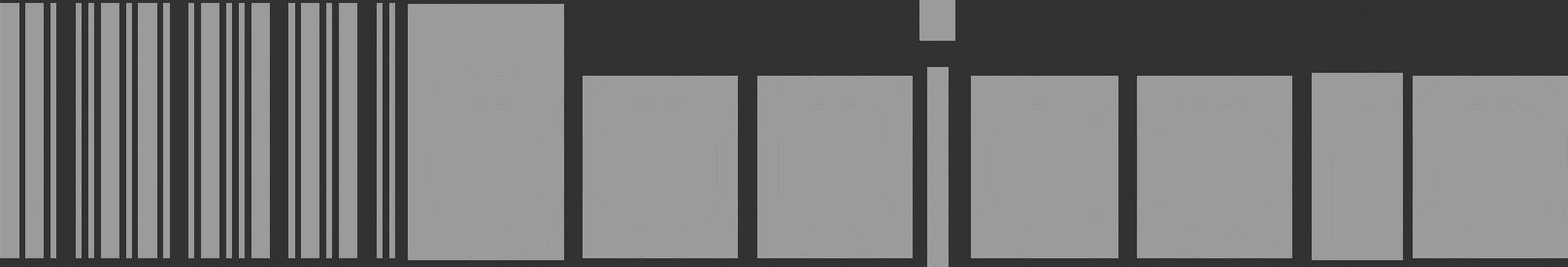 booicore logo grey