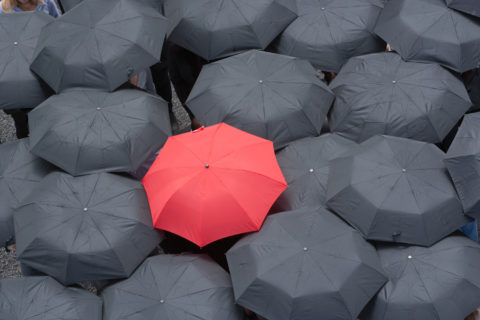 red umbrella in a sea of black umbrellas